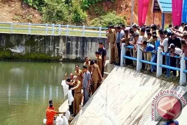 Launching Nagari Mandiri Pangan Kab. Pesisir Selatan
